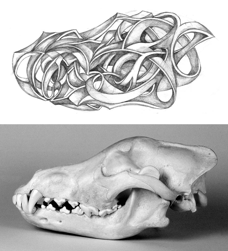 Abstract Wolf Skull